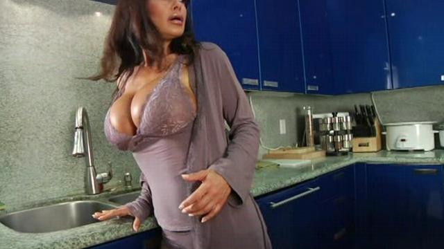 Lisa Ann Busty Housewives 4